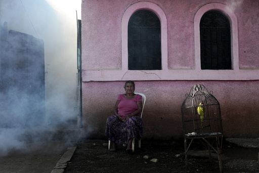 A woman sits outside her house while a health ministry worker fumigates to kill mosquitoes during a campaign against dengue and chikungunya in Managua