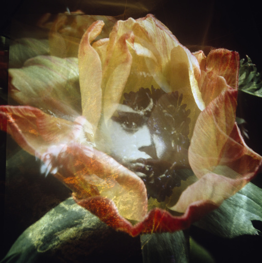 Child's face and flower petals