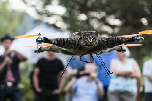Taxidermy animals mounted on drones