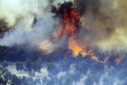 Wildfire burns at the village of Piedrabuena