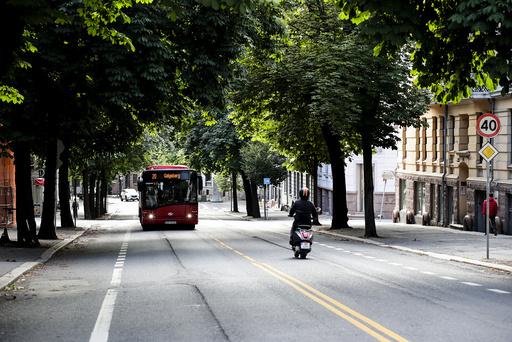 Oslo 20200708.  20 bussen til Galgeberg går under kastanjene i  Bygdøy allé. Foto: Vidar Ruud / NTB