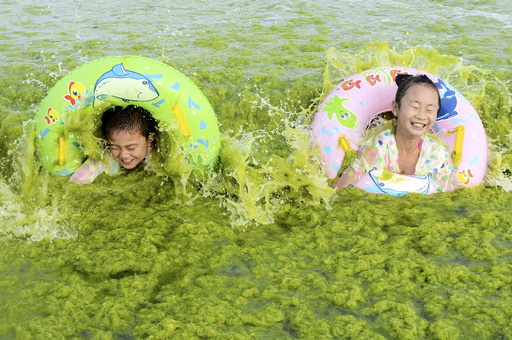Children laugh as they swim with floats at the seashore covered by algae, in Qingdao