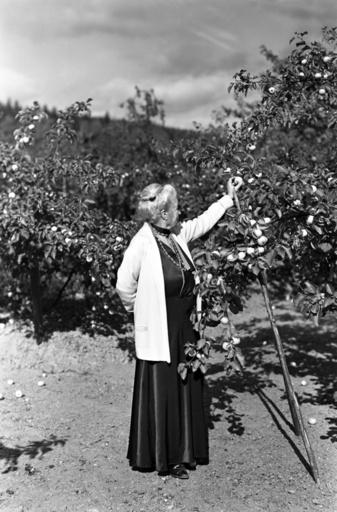 Hemma hos Selma Lagerlöf på Mårbacka