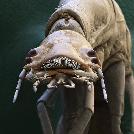 Diving beetle larva, SEM