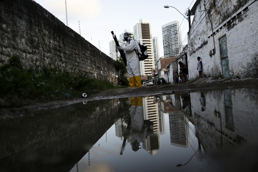 A municipal worker sprays insecticide at the neighborhood of Imbiribeira in Recife