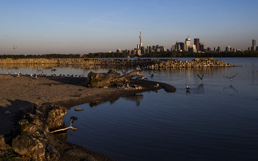 Wider Image: Earthprints: Leslie Street Spit
