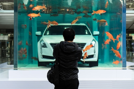 A man looks at a Cadillac CT6 displayed inside a fish tank during an event promoting the car's environmental-friendly features, in Shanghai