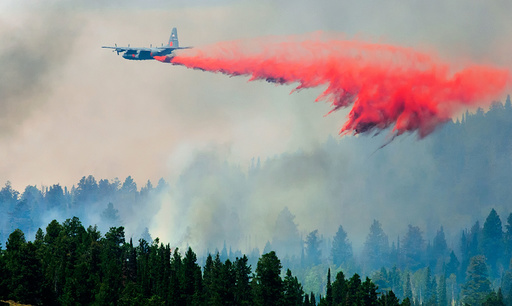 Peterson Hollow Fire