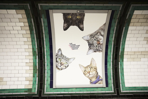 London Tube adverts replaced with cat pictures as âäÅcitizens takeoverâä™ purrs into life