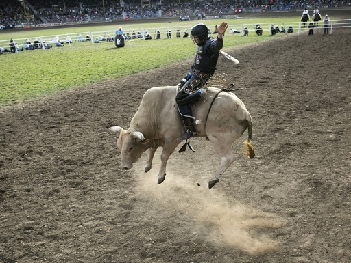 Annual Pendleton Rodeo Round Up Draws Crowds To Pendleton