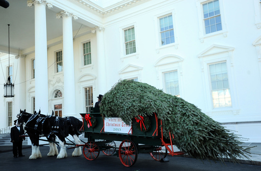 Christmas tree for the White House