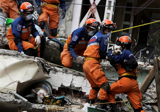 Members of a Japanese rescue team hold a dog found underneath the rubble of a collapsed multi family residential, after an earthquake, in Mexico City
