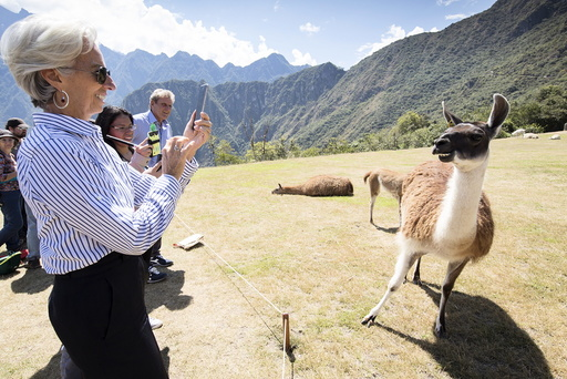 IMF handout photo shows IMF Managing Director Lagarde taking a photo of a llama during her tour of Machu Picchu