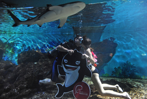 A couple take part in an underwater kissing competition on Qixi festival, or Chinese Valentine's Day, at an ocean park in Wuhan