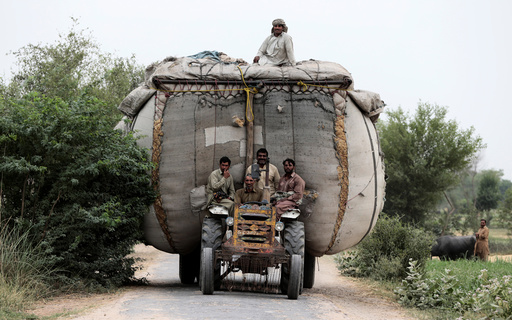 Farmers ride home on a tractor pulling an overloaded trailer full of straw in a village outside Faisalabad