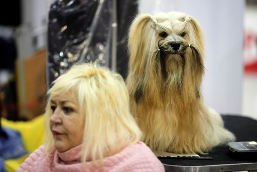 A woman sits next to a dog during the fifth edition of the