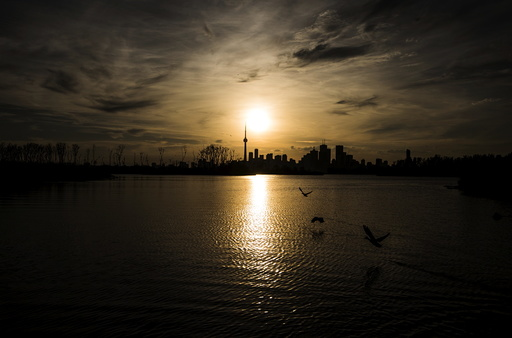 Wider Image: Earthprints: Leslie St Spit