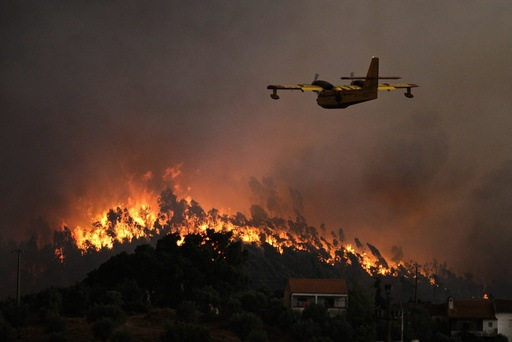 Forest fire in Abrantes